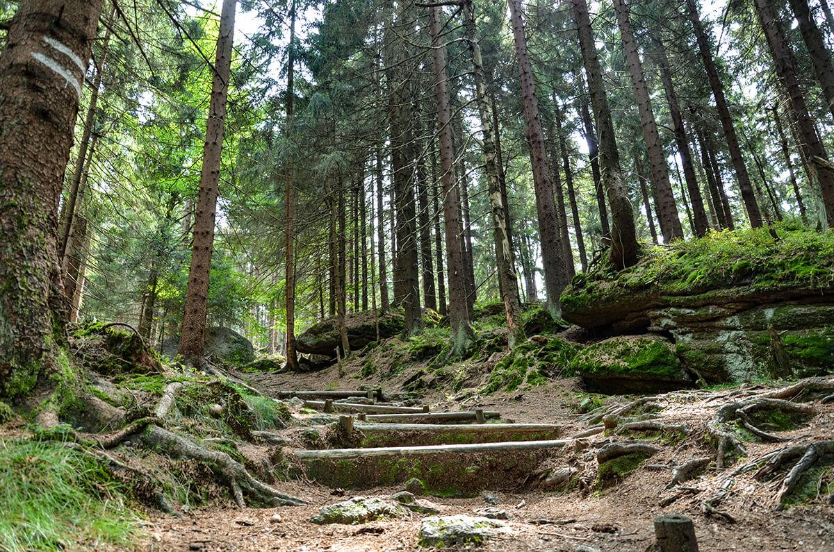 Mitten in Oberfranken - Weg zum Ochesenkopf